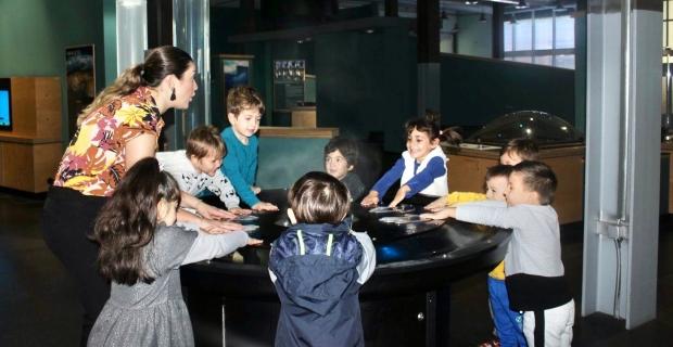 Bilgi Köprüsü Montessori YAZ OKULUNA HAZIR