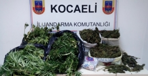 Aylık uyuşturucu raporu: 248 operasyonda 58 kişi tutuklandı