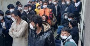 Kocaeli'de kaçak göçmen operasyonu: 94 gözaltı
